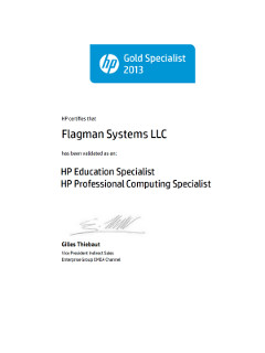 Сертификат HP Gold Specialist 2013